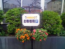 アイム前のお花