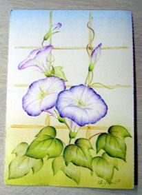おばあちゃんから朝顔のポストカード