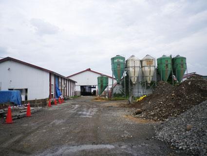 柏葉牧場の牛舎