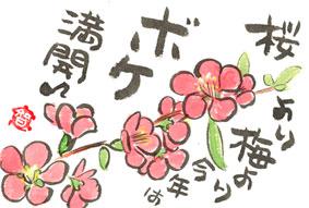 会社の前のボケの花
