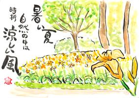 はがき絵日和20130810ノーザンホースパーク