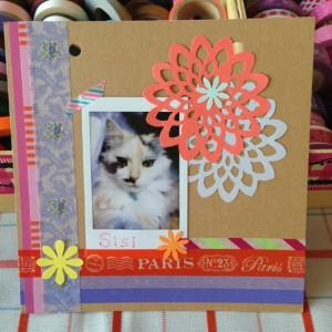 ねこちゃんの写真カード