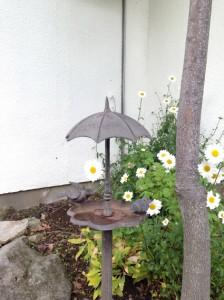 小鳥さんの雨宿り