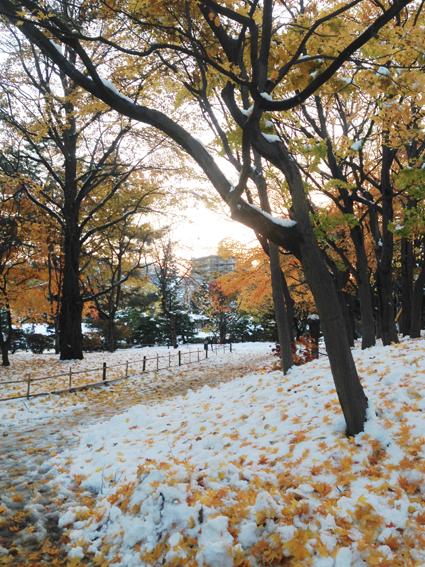 中島公園の八窓庵