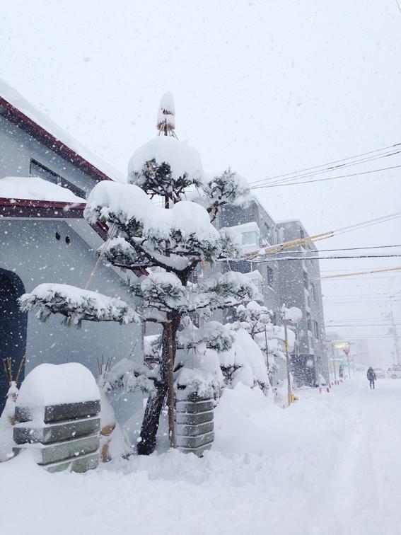 札幌は大雪!