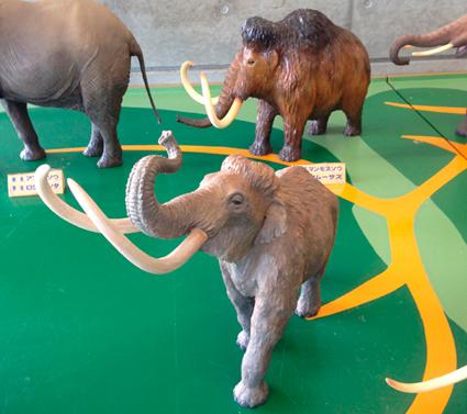 ナウマン象の後ろはマンモスです