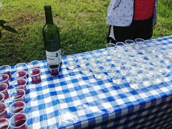 本当にワインの試飲です!
