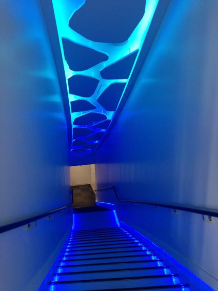 展示室へ降りる階段