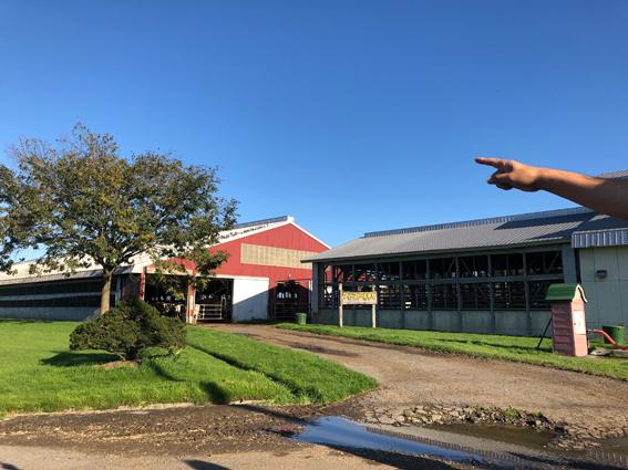 社長さんが農場を案内してくれました