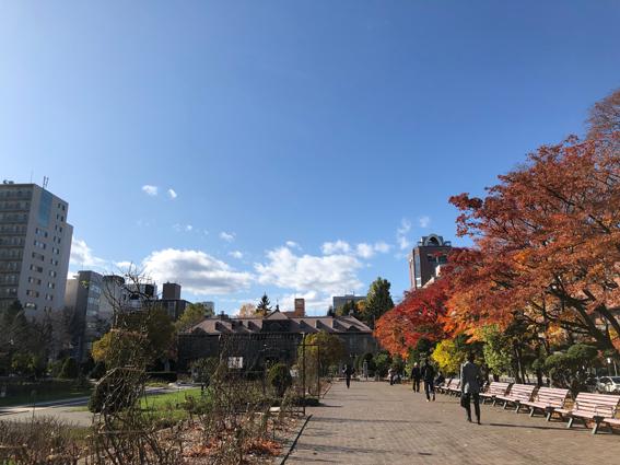 大通公園から札幌市資料館を望む