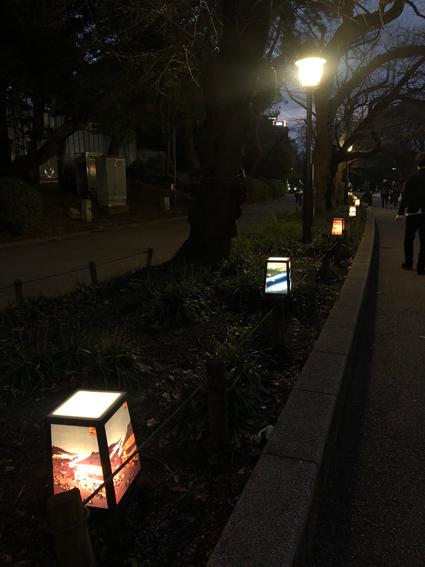 上野華灯路 浮世絵行灯
