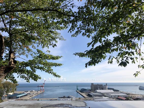 小樽港を一望できます!