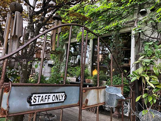ツタに覆われたお店とお庭