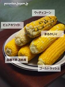 5種とうもろこしの食べ比べ