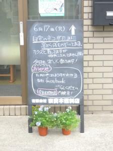 奈良木13