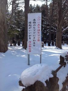円山動物園47