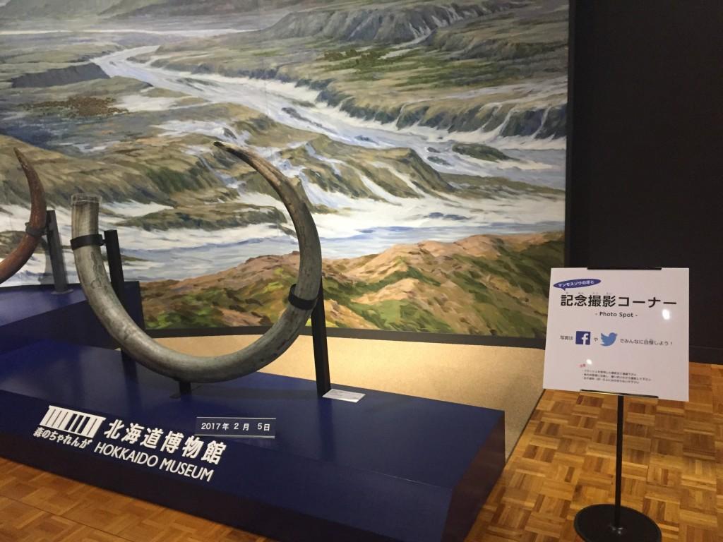 北海道博物館07